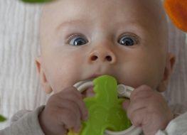 el sonajero, el juguete ideal para bebés